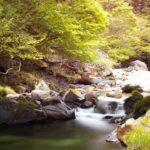 自称・フォトグラファーが行く。桐生川の源流へ行ってきました。そこはまさに源流