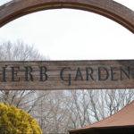 自称・フォトグラファーが行く。国営武蔵丘陵森林公園のハーブ園は3月でもきれいな花が楽しめる