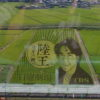 自称・フォトグラファーが行く。行田市の田んぼアートがなかり芸術的