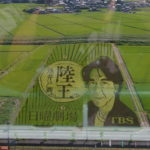 自称・フォトグラファーが行く。行田市の今年の田んぼアートはあのドラマだった。
